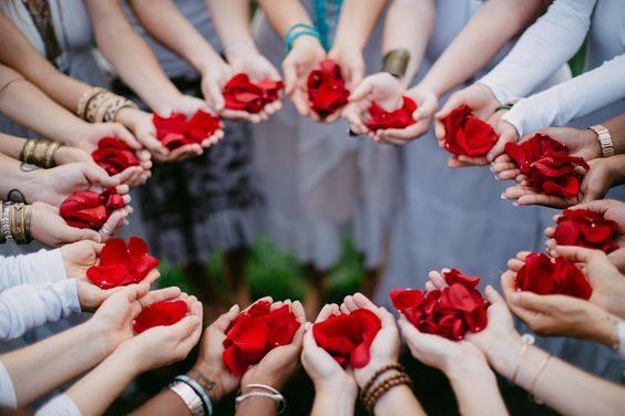 mãos e rosas